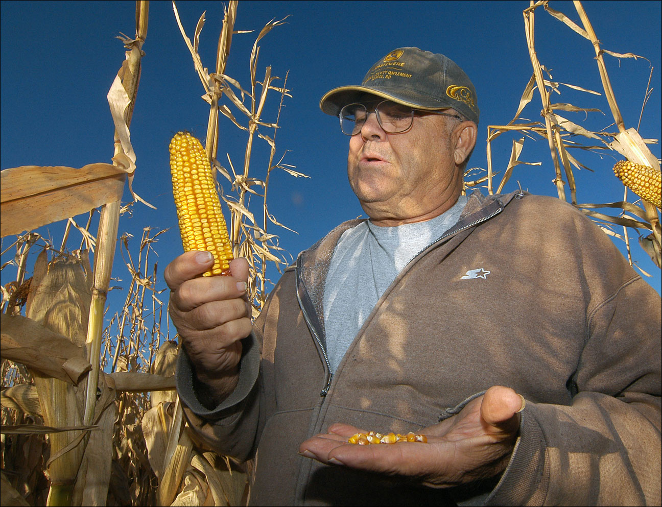 Robert Malsom checks corn in one of his fields near Roscoe, S.D. Malsam nearly went broke in the 1980s when corn was cheap. So now that prices are high and he can finally make a profit, he's not about to apologize for ripping up prairieland to plant corn. (AP Photos/Doug Dreyer)